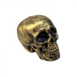 EUROPALMS Halloween Skull, gold