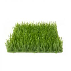 EUROPALMS Artificial grass tile, sun, 25x25cm