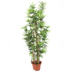 Bamboo tree with natural trunks 230cm