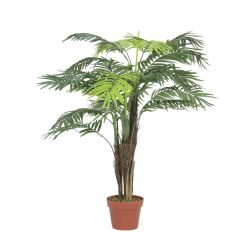 Arecapalm 13 leaves with pot 120cm