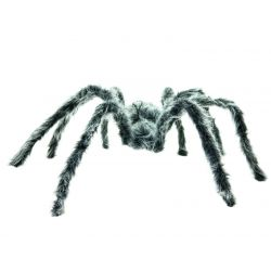 EUROPALMS Spider gray