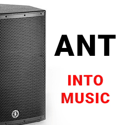 Ant into music